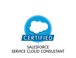 Salesforce training in noida best salesforce training institute in salesforce certified service cloud fandeluxe Gallery