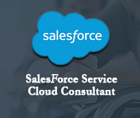 Salesforce training in noida best salesforce training institute in salesforce fandeluxe Gallery